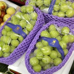 今日の果物 (2021/SEP/01) Today's Fruits