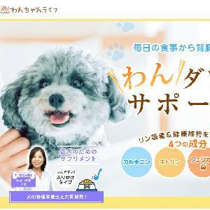 愛犬の体調は万全ですか?『ジナース』で腎臓の機能を整え健康寿命をサポート!