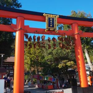 京都府   (京都市)     松尾大社