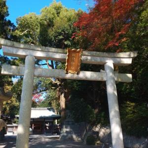 京都府  (京都市)     諸羽神社