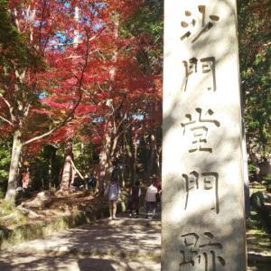 京都府  (京都市)    毘沙門堂
