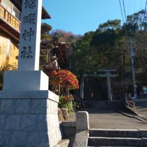 大阪府   (四條畷市)     四條畷神社