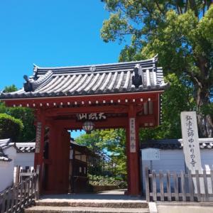 京都府  (長岡京市)     乙訓寺