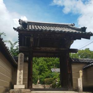 大阪府  (八尾市)      教興寺