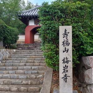 大阪府  (八尾市)     梅岩寺