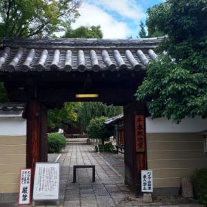 京都府  (京都市)    大報恩寺