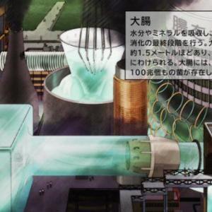 はたらく細胞 BS11(2/13)#06