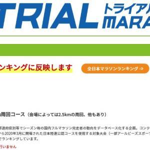 トライアルマラソンの値段