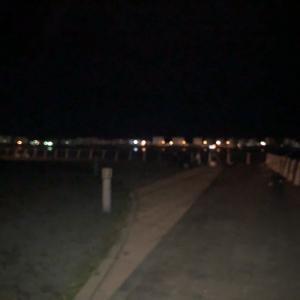 【夜釣り】入舟公園  寒い