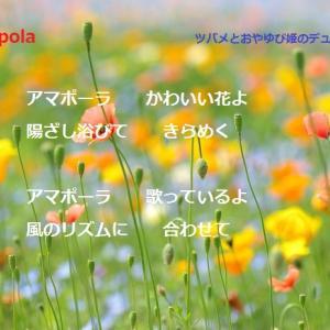 ♪アマポーラ