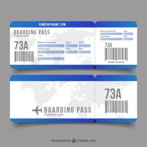 初めて特典航空券を取ってみました。