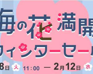 gooSimseller「ウィンターセール」がスタート!2月12日まで