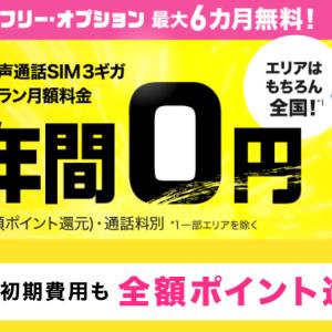 BIGLOBEモバイル 半年間基本料0円キャンペーン 6/30まで締切迫る!-2020年6月編-