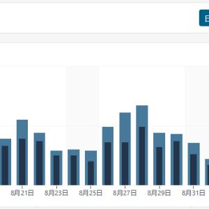 WordPress の「表示数」が実際の値より大きい?