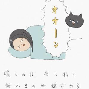 悪意のない睡眠妨害