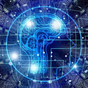 右利きと左利きは、脳の細胞骨格から違う