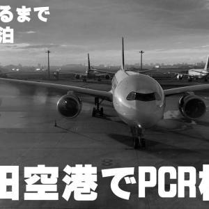 羽田空港でPCR検査
