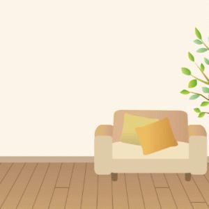 【大学生の一人暮らし】テレビとネットはあった方がいい?