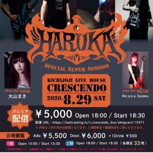 2020年8月29日 「HARUKA」ライブ東京