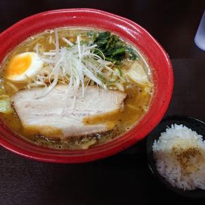 函館麺匠 極さん、二度目にして「嘘だろ、承太郎!」(カレーラーメン巡礼⑯)