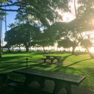 ハワイでのヨガ療法士 養成講座開催のお知らせ(2019/11/26~)あなたの過去を癒すヒーリン