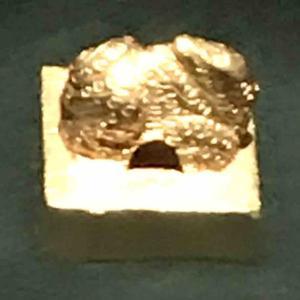 福岡市博物館(①倭奴国王の金印)