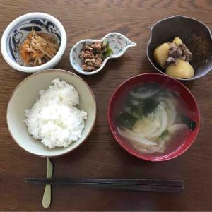 5月17日朝食〜夕食