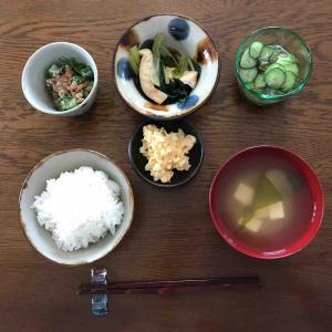 7月25日朝食〜夕食