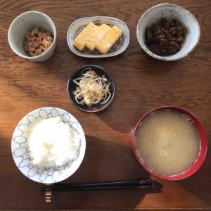 11月17日朝食〜夕食