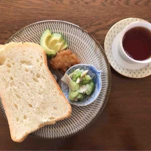 11月16日朝食、夕食