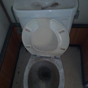 トイレ磨き