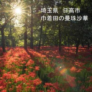 親父のポケgo日記 〔2019〕9月29日号(ジラーチ ゲット!と今後のミューツーEXレイドに期待!!)