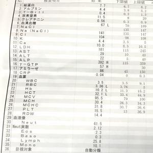 CTの結果とアブジェム31回目 病院の危機管理も不安だわ