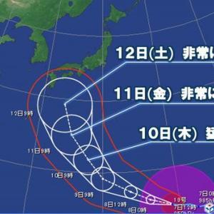 台風19号 最大瞬間風速70m?