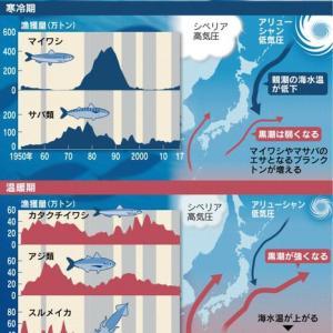 気候変動と魚の生息域のの変動