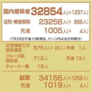 Go to コロナ!、29日の感染者1,237人は過去最多