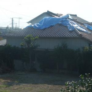 【拡散希望】台風15号鋸南町の被害