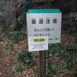 大房崎自然公園を歩く2 増間島と洞窟