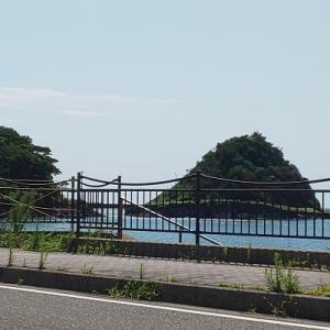 亀ヶ崎にある真珠島の話