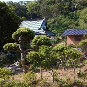下佐久間の天寧寺を探索
