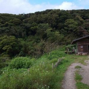 山の中にある自然を感じるレストラン るんたのにわ