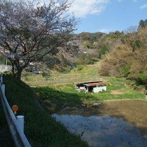 横根村の風景と開墾の痕跡