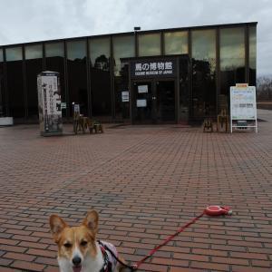 競馬場(根岸森林公園):その2