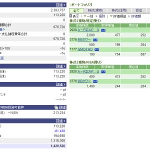 総資産¥500万が遠く感じるので