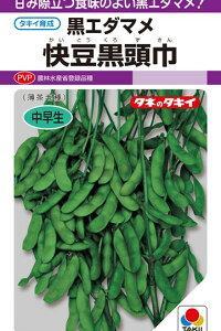 枝豆(快豆黒頭巾) 2021