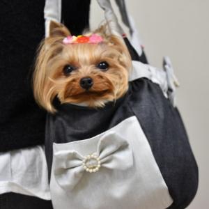新しいバッグ♪