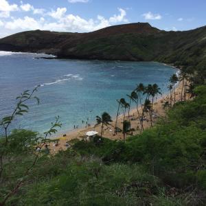 ハワイ オアフ島のおすすめ観光スポット!絶景ビーチ!