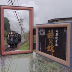雨のSL秩父錦号 2