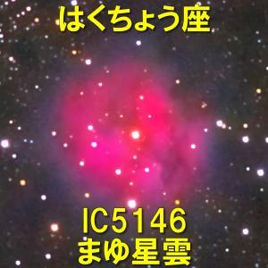 IC5146(まゆ星雲)