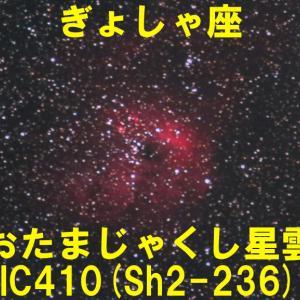 IC410(おたまじゃくし星雲)